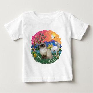 Tierra de la fantasía (FF) - gato de Himilayan Tshirts