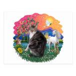 Tierra de la fantasía - Tabby y gato blanco (AmSH) Tarjeta Postal