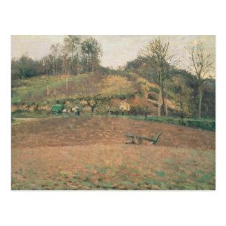 Tierra de labranza, 1874 postales
