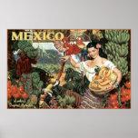 tierra de México del esplendor tropical Poster