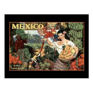 tierra de México del esplendor tropical Tarjetas Postales