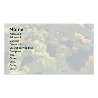 Tierra de mil lagos tarjetas de visita