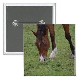tierra de pasto marrón del caballo equine.JPG Pin Cuadrada 5 Cm