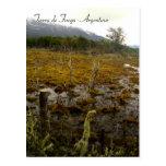 Tierra del Fuego - la Argentina Postales