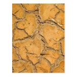 tierra del suelo seco/de la grieta tarjeta postal