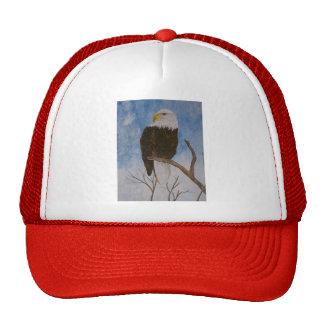 Tierra del valiente gorras
