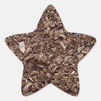 Tierra natural calcomanía forma de estrellae