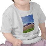 Tierra pastada en verano, península de Coromandel, Camisetas