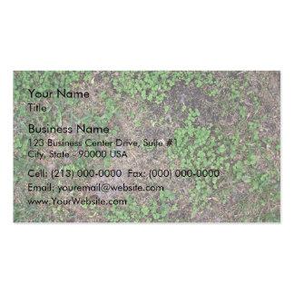 Tierra seca con la hierba y la mala hierba del dól tarjetas de visita