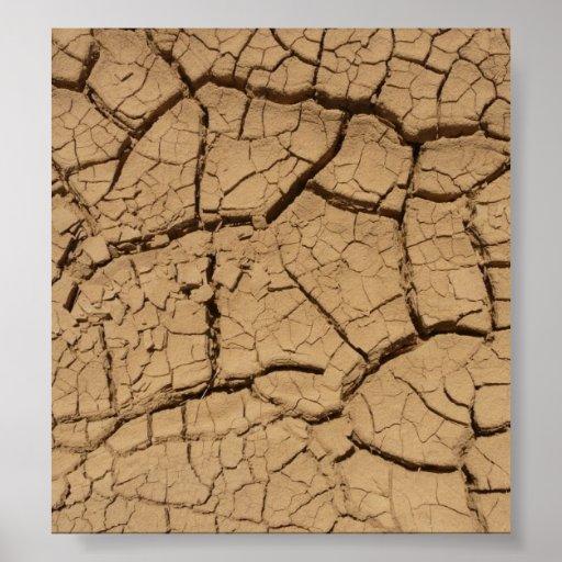 Tierra seca póster