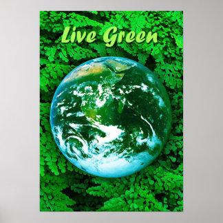 Tierra verde - conciencia ecológica póster