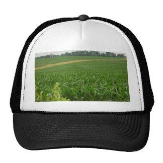 Tierra verde de dioses ...... gorras de camionero
