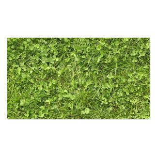 Tierra verde tarjetas de visita