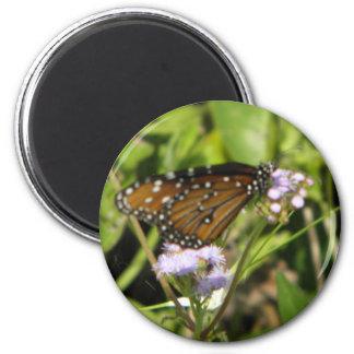 Tierras de la mariposa en una flor imán para frigorifico