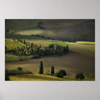 Tierras de labrantío alrededor de Montepulciano, T Poster