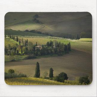 Tierras de labrantío alrededor de Montepulciano T Alfombrillas De Ratones