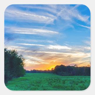 tierras de labrantío Carolina del Sur el condado Pegatina Cuadrada