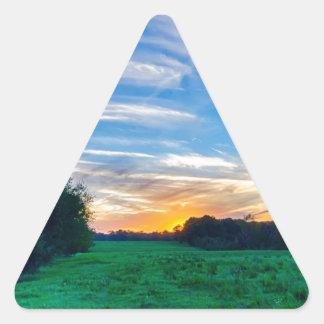 tierras de labrantío Carolina del Sur el condado Pegatina Triangular