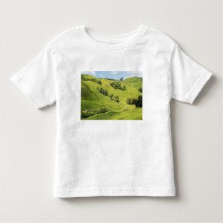 Tierras de labrantío cerca de Gisborne, Nueva Tee Shirts