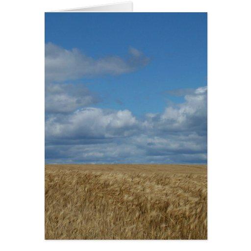 Tierras de labrantío de Maine Tarjeta De Felicitación