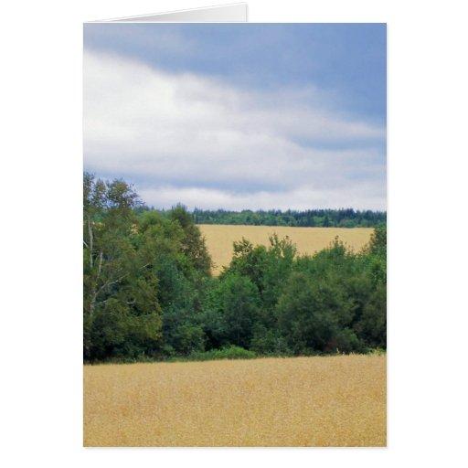 Tierras de labrantío de Maine Tarjetas