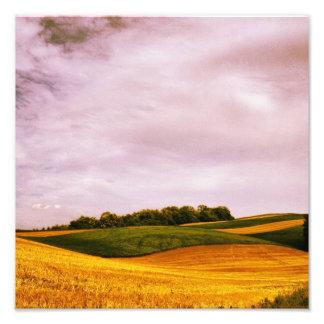 Tierras de labrantío de oro fotografía