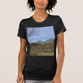 Tierras de labrantío en invierno en Calabria Camisas