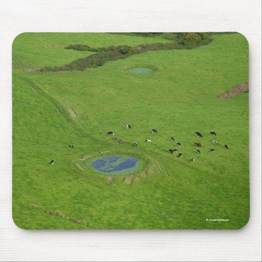 Tierras de labrantío en las islas de Azores Alfombrillas De Raton