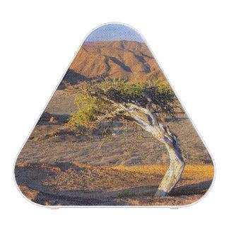 Tierras Gnarled del árbol y del desierto, Altavoz Bluetooth
