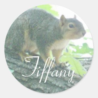 Tiffany Squirrel stickers