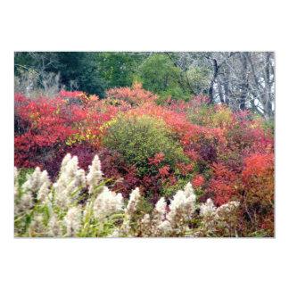 Tifft Nature Preserve - Fall Foliage Card