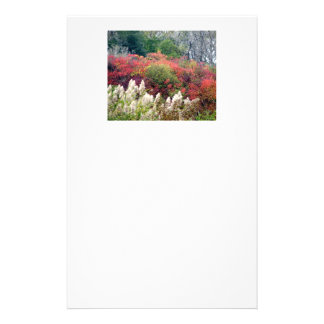 Tifft Nature Preserve - Fall Foliage Stationery