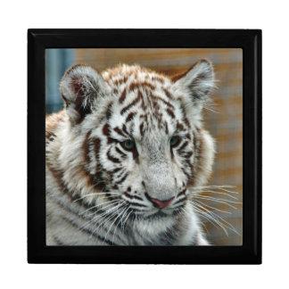 Tiger20151001 Jewelry Box
