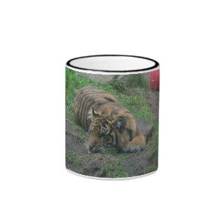 tiger 005 mug