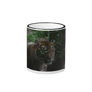 tiger 006 mug
