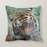 Tiger 012 pillow