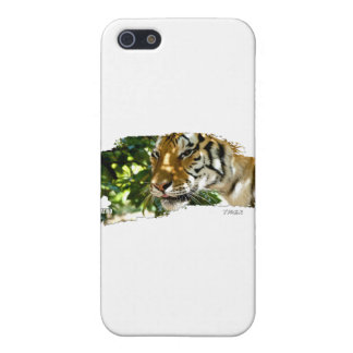 Tiger 01 cases for iPhone 5