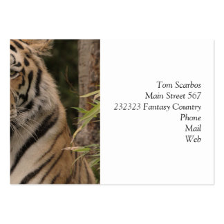 Tiger 0215 large business cards (Pack of 100)