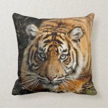 Tiger 037 throw pillow