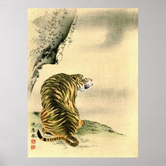 Tiger 1870 print