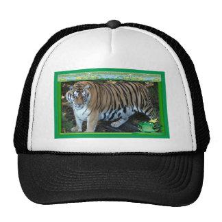 tiger-1-st-patricks-0022 trucker hat