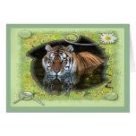 tiger-1-st-patricks-0034 card