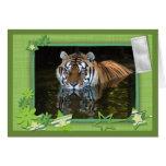 tiger-1-st-patricks-0048 greeting card
