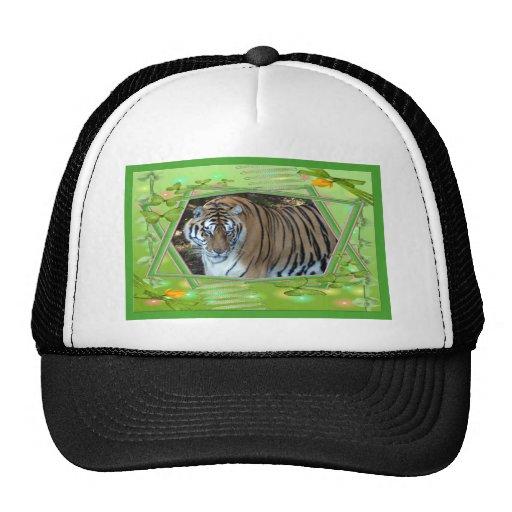 tiger-1-st-patricks-0056 gorros
