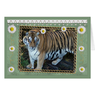 tiger-1-st-patricks-0076 tarjeta de felicitación