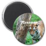 Tiger 2 Inch Round Magnet