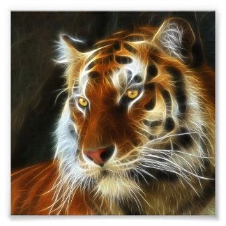 Tiger 3d artworks photo print