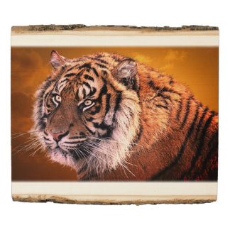 Tiger 4A Wooden Photo Panel