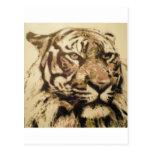 tiger 50x50 2012 wenskaarten