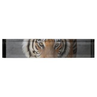 tiger-54 desk name plate